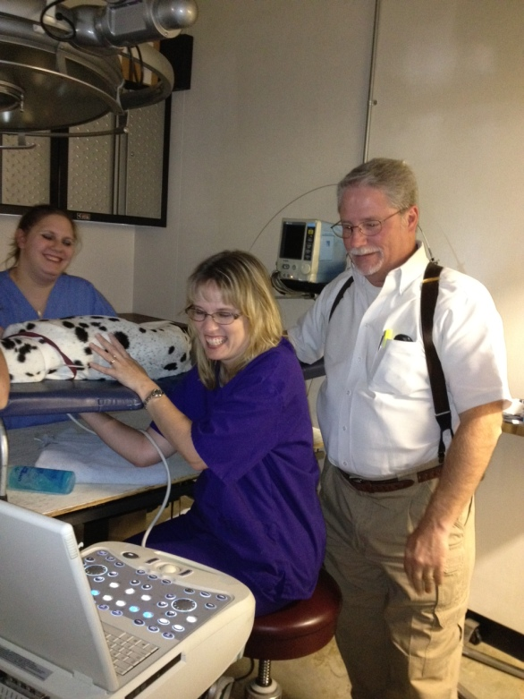 Teaching veterinary ultrasound
