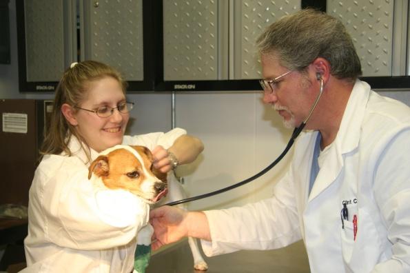 Titus, the wonder dog, needs a check-up